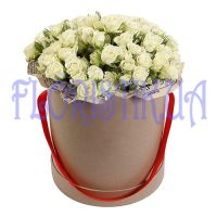 Box spray roses